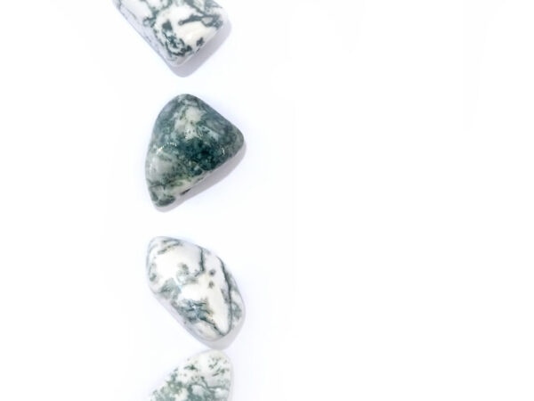 tree agate tumblestone at surrendertohappiness.com