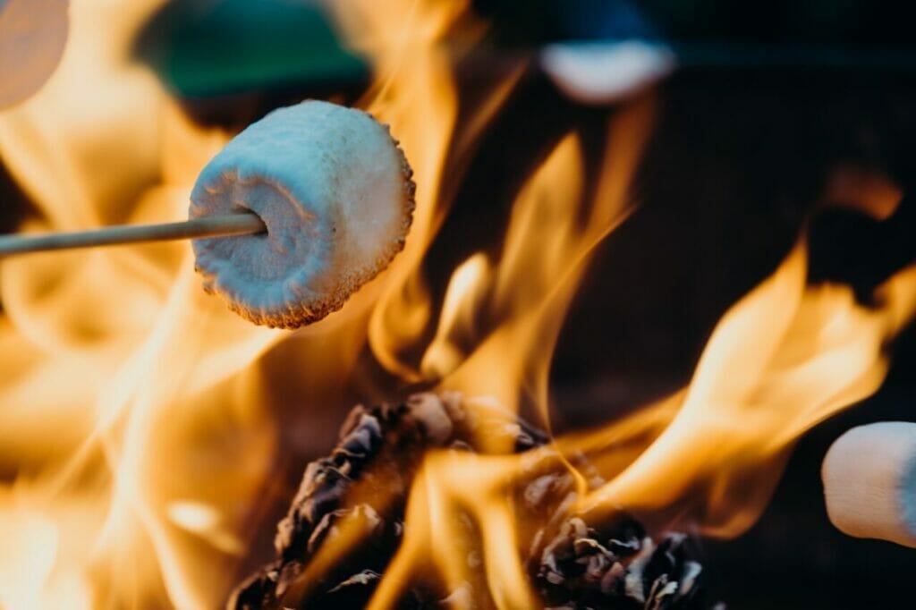 enjoy campfire marshmallows in autumn